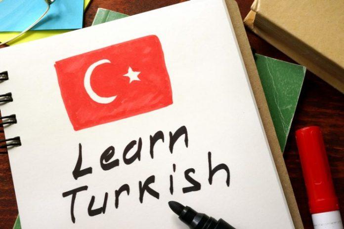 türkçe'nin gelecekteki yeri